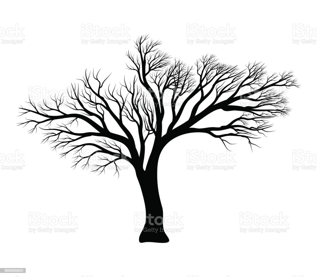 bare tree silhouette vector symbol icon design. vector art illustration