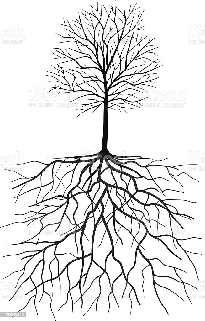 Bare Tree Silhouette With Roots Illustration Stock Vector ...