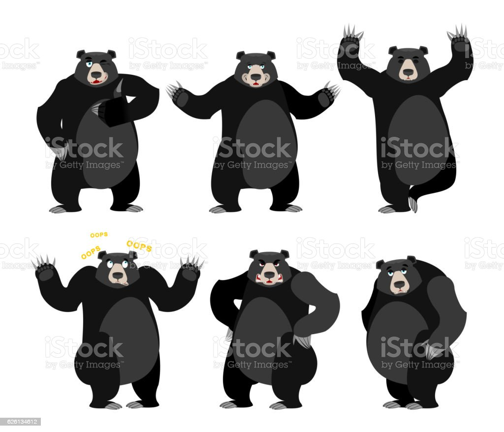 Baribal American black bear set. Grizzly various poses. Expressi vector art illustration