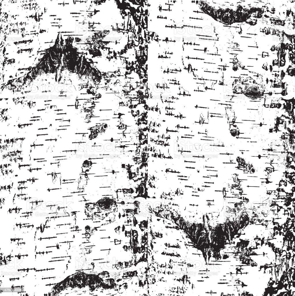 bark of birch in the cracks texture. vector art illustration
