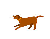 barking dog isolated vector illustration
