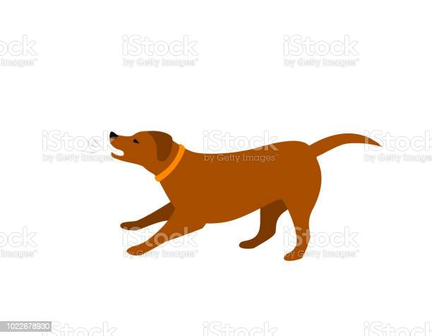 Barking dog isolated vector illustration vector id1022678930?b=1&k=6&m=1022678930&s=612x612&h=hemaw5wmizxdzipefewzj 1exfg orjwsev5vmo1z4y=