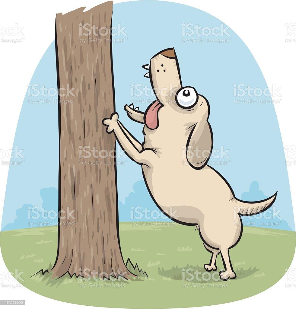 Barking Up a Tree royalty-free stock vector art