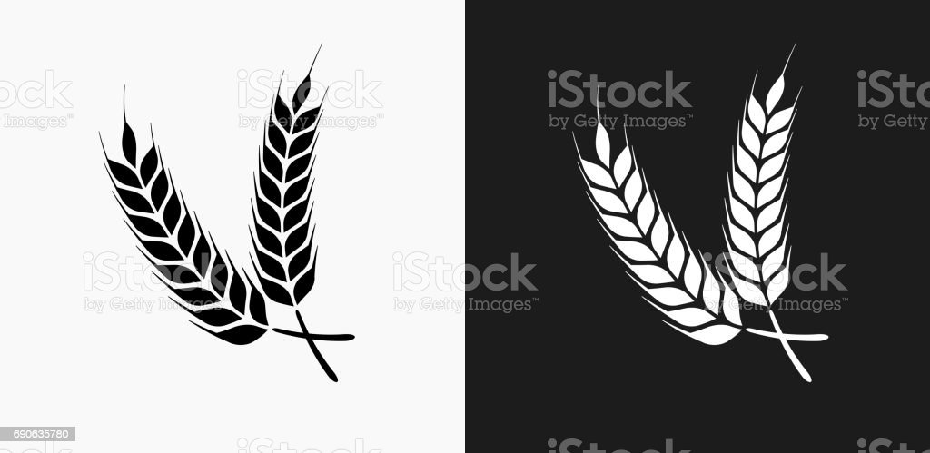 Barley Icon on Black and White Vector Backgrounds vector art illustration