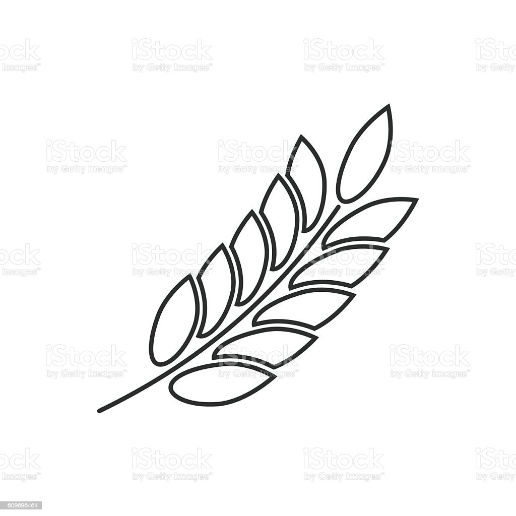 barley vector icon stock vector art more images of agriculture rh istockphoto com wheat barley vector wheat barley vector