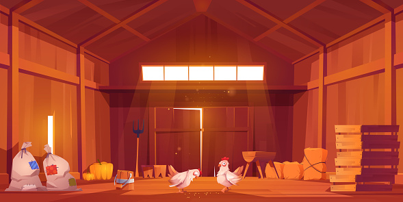 Barn interior with chicken, farm house inside view