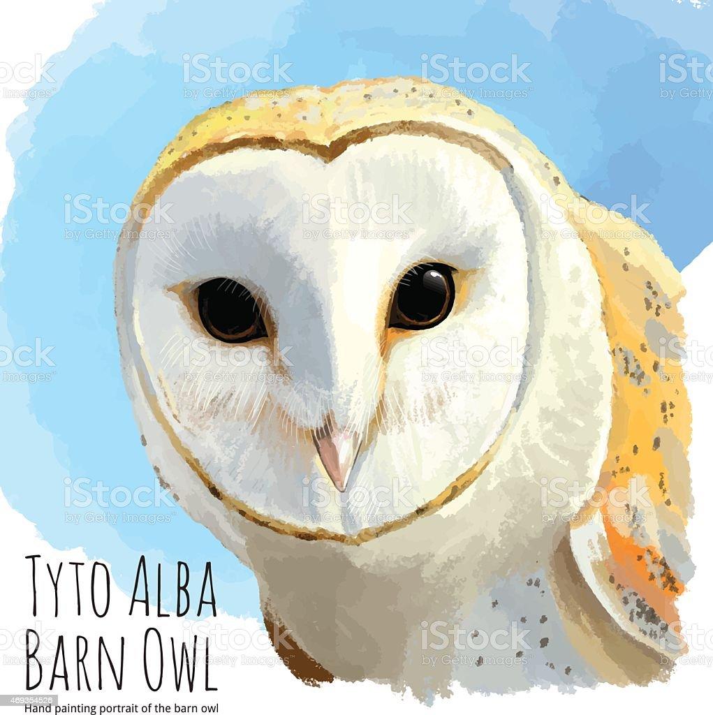 Barn owl - linear vector hand drawing向量藝術插圖