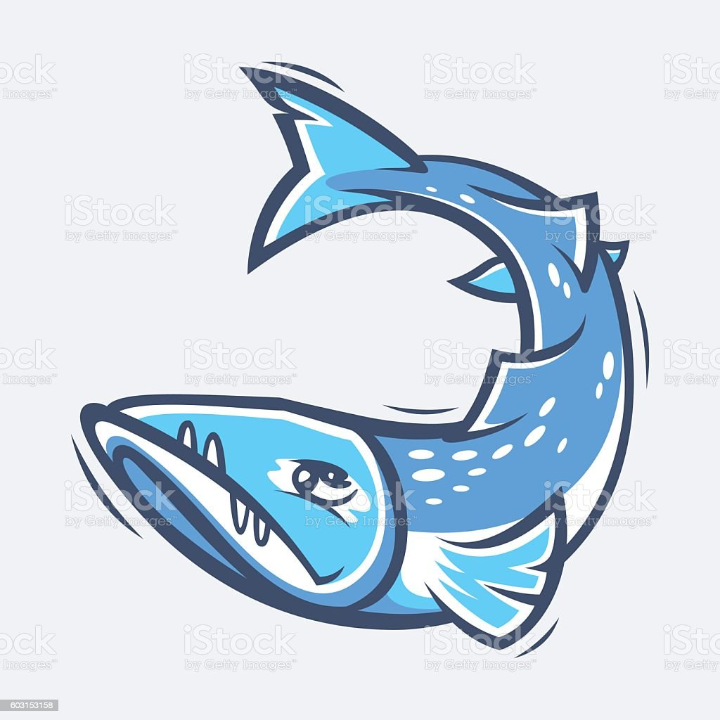 Barracuda sea life vector illustration vector art illustration