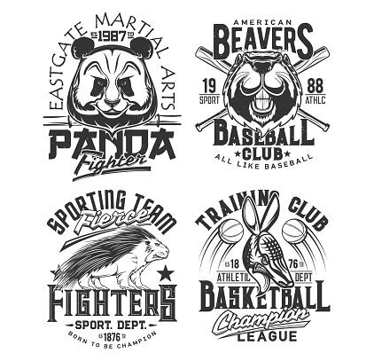 Baseball, basketball team t shirt print sport club