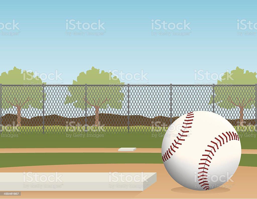 Baseball in the park vector art illustration