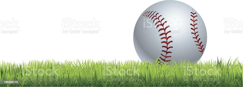 baseball - – Vektorgrafik