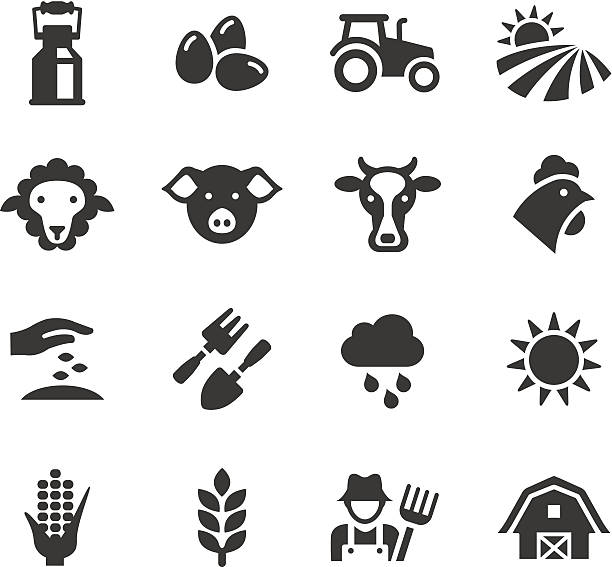 Basic - Agriculture and Farming icons Vector illustration, Each icon can be used at any size.  farm animals stock illustrations