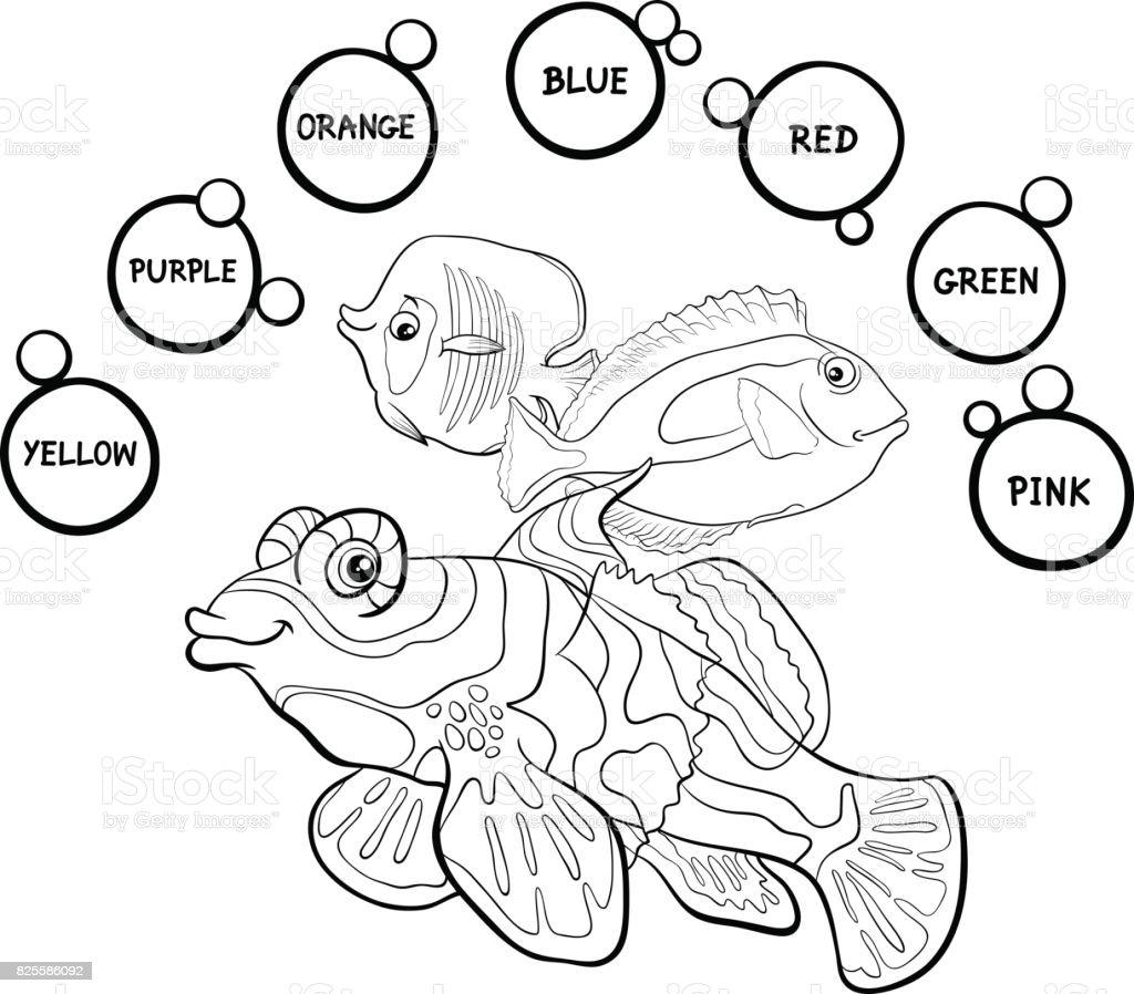 Colores Básicos Educativos Página Para Colorear - Arte vectorial de ...