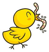 Cute and funny small chicken eating worm
