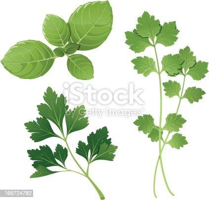 Group of three herbs