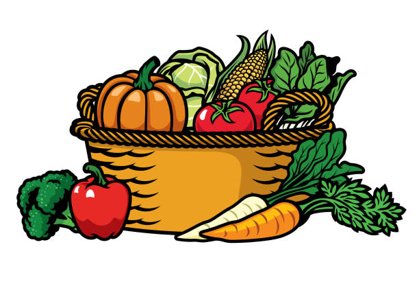 stockillustraties, clipart, cartoons en iconen met mand vol groenten - mand