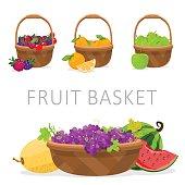 basket of fruit. vector illustration