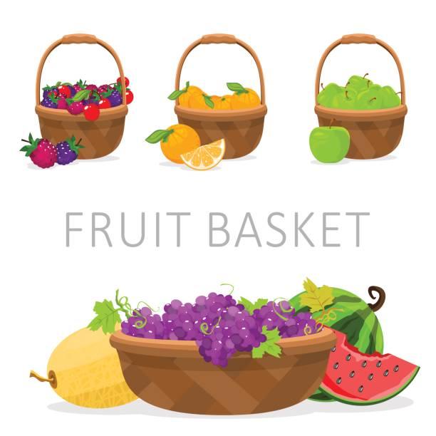 stockillustraties, clipart, cartoons en iconen met fruitmand. vectorillustratie - mand