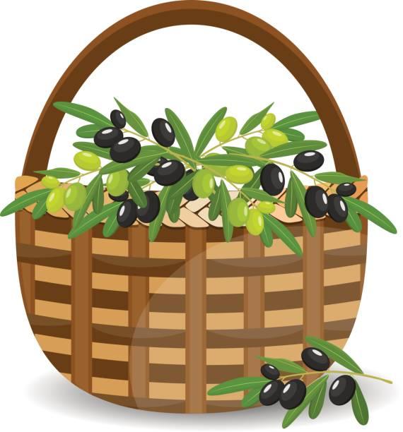korb mit grünen und schwarzen oliven, isoliert auf weiss. vektor-illustration. - stoffmarkt stock-grafiken, -clipart, -cartoons und -symbole