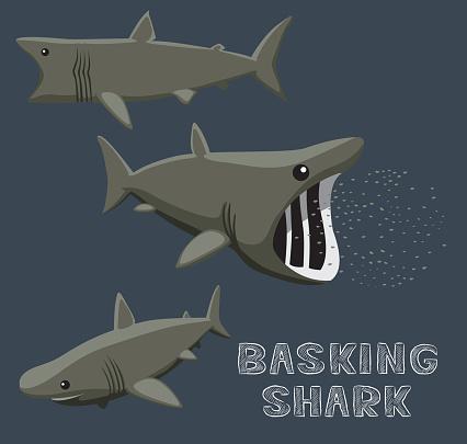 Basking Shark Cartoon Vector Illustration Stock Illustration - Download Image Now