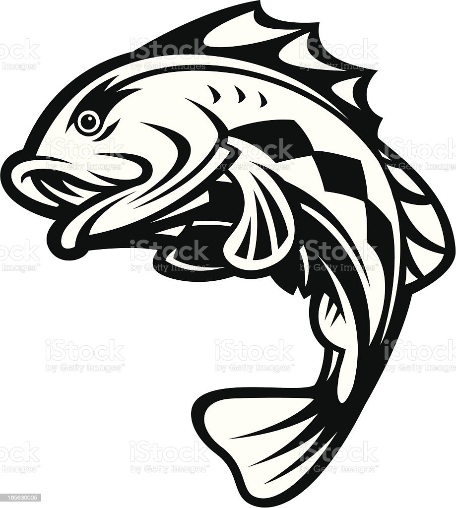 bass fish jumping bampw stock vector art more images of animal fin rh istockphoto com Bass Fish Outline Vector Fishing Lure Clip Art