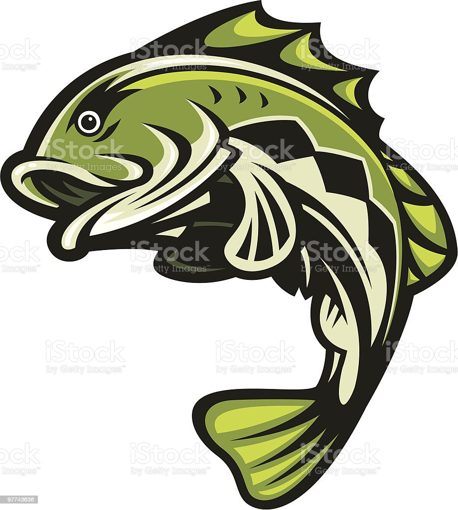 bass fish jumping stock vector art 97743636 istock