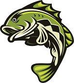 istock Bass Fish Jumping 97743636
