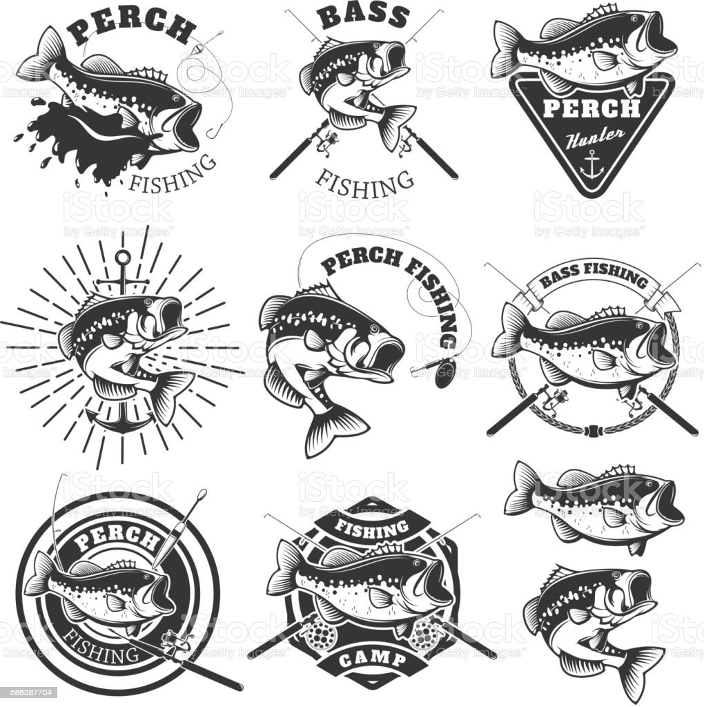 Bass fishing labels. Perch fish. Emblems templates for fishing vector art illustration