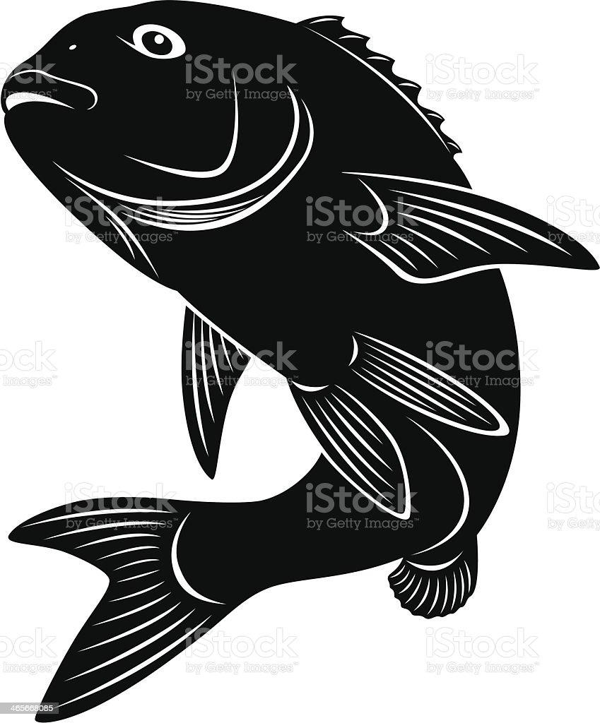 bass vector art illustration