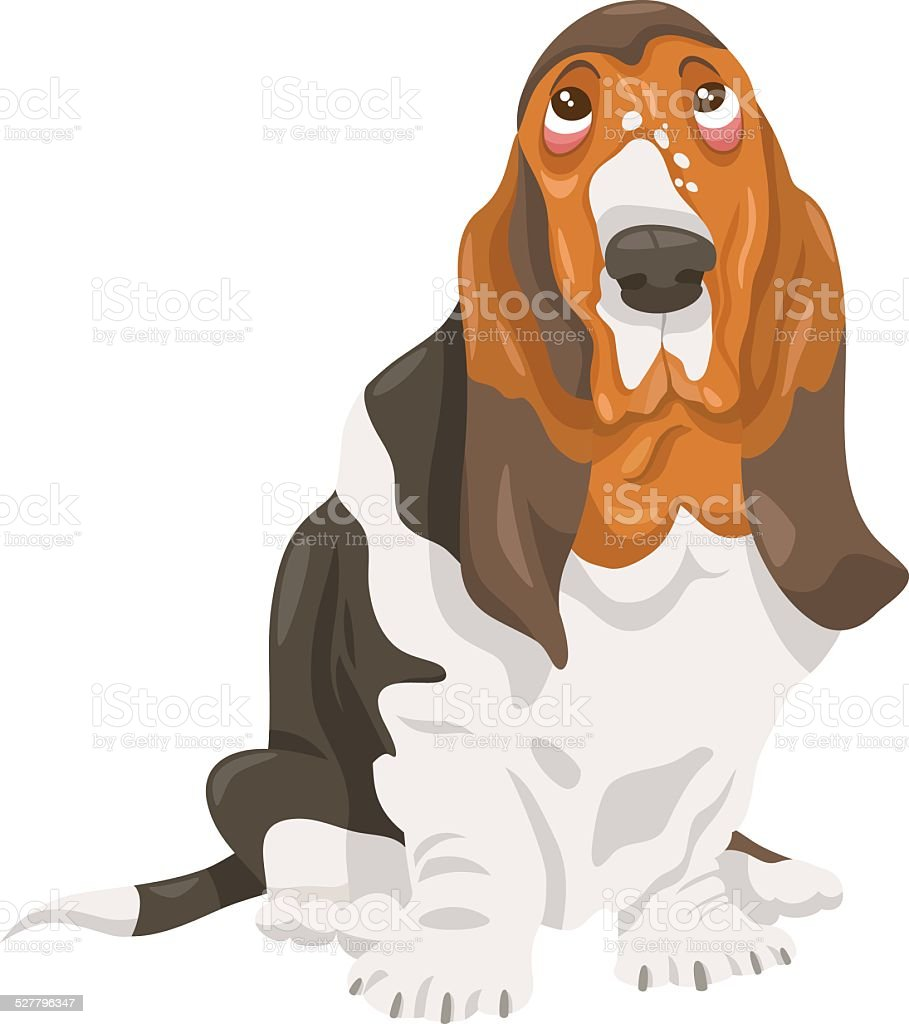 Basset Hound Dog Cartoon Illustration Stock Vector Art & More Images ...