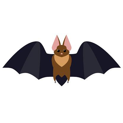 bat flat illustration
