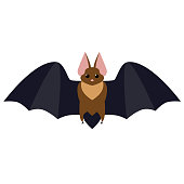 bat flat illustration isolated on white. halloween and mystic forest series