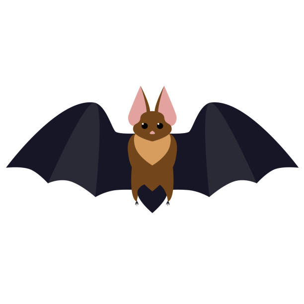 bat flat illustration - bat stock illustrations, clip art, cartoons, & icons