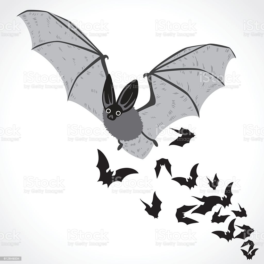 bat fly vector art illustration