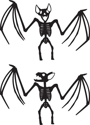 Bat Skeleton Silhouettes