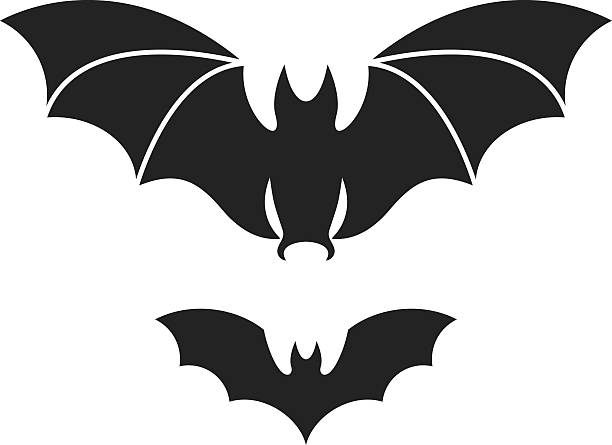 bat  - megabat stock-grafiken, -clipart, -cartoons und -symbole