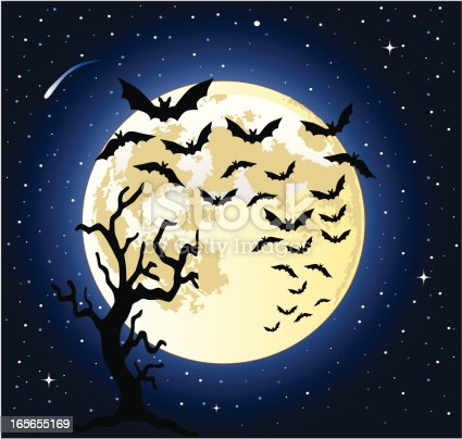 A vector illustration of bats flying across the full moon.