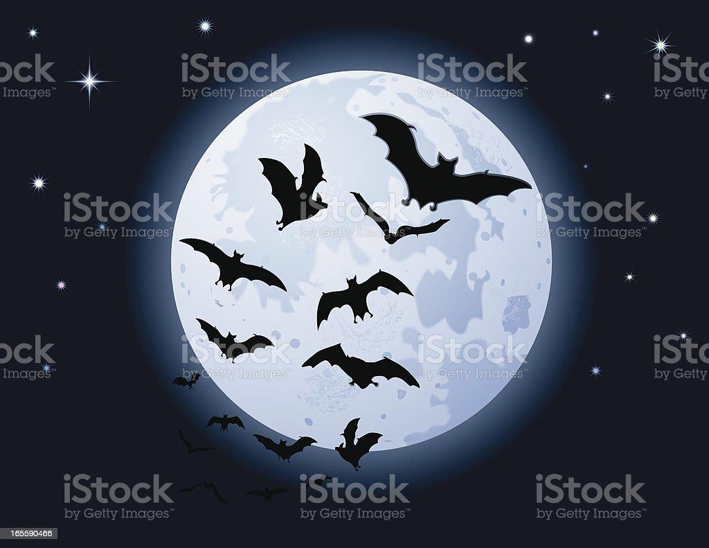 Bats Full Moon vector art illustration