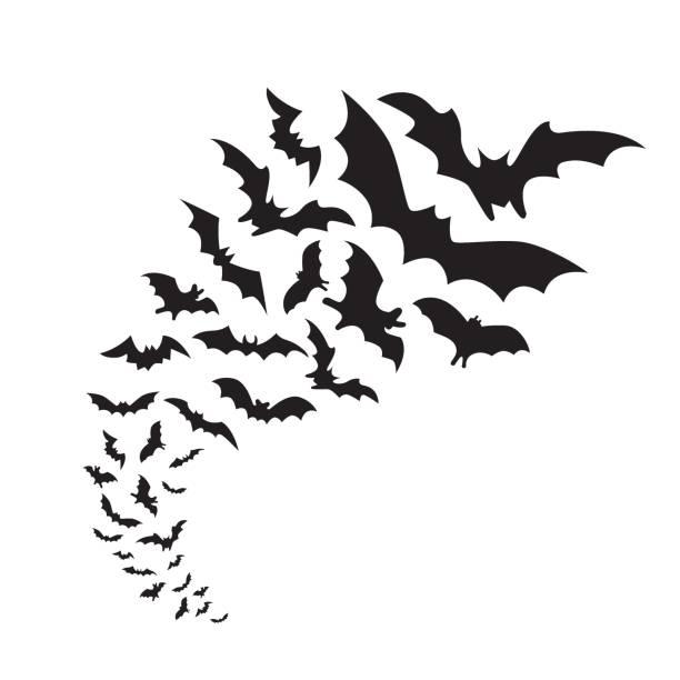 Bats Flying bats group isolated on white background. Black night bat silhouettes bat stock illustrations