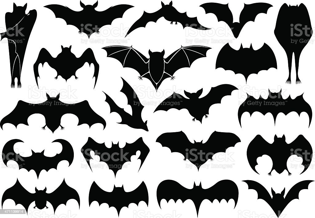 Bats vector art illustration