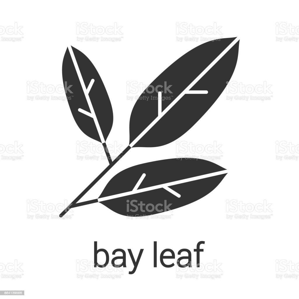 Bay leaves icon royalty-free bay leaves icon stock vector art & more images of bay leaf