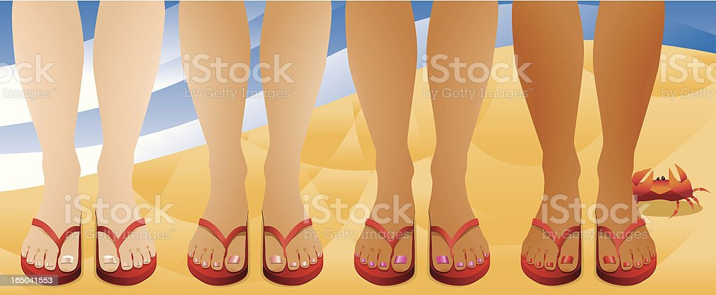 Beach Feet Flip Flops Crab vector art illustration