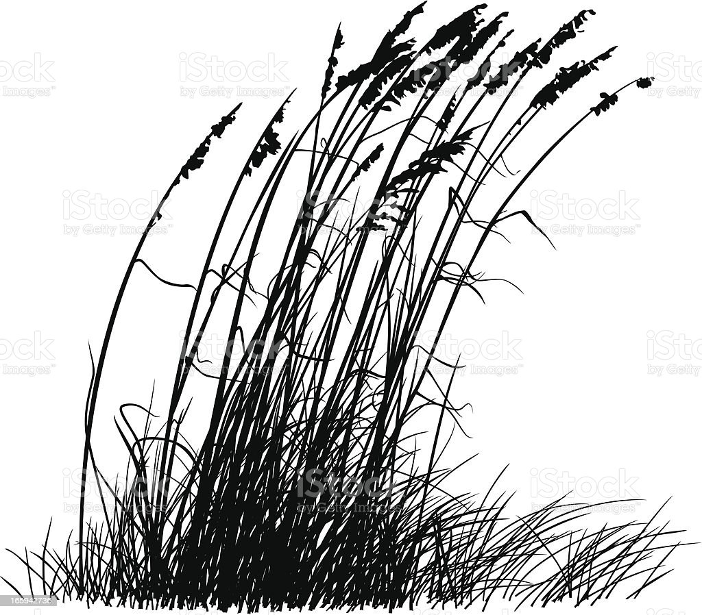 Beach Grass Silhouette vector art illustration
