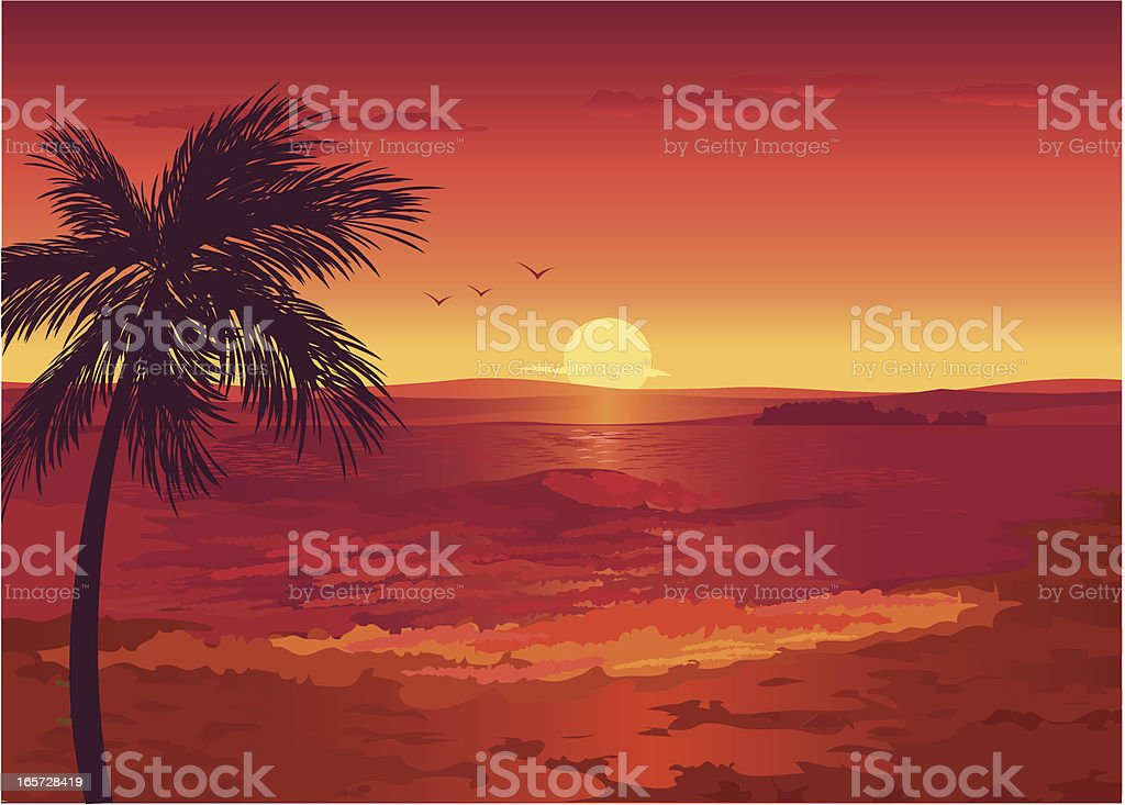 Strand bei Sonnenuntergang – Vektorgrafik