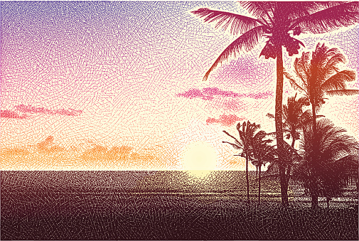 Beach, Palm Trees and Sunset
