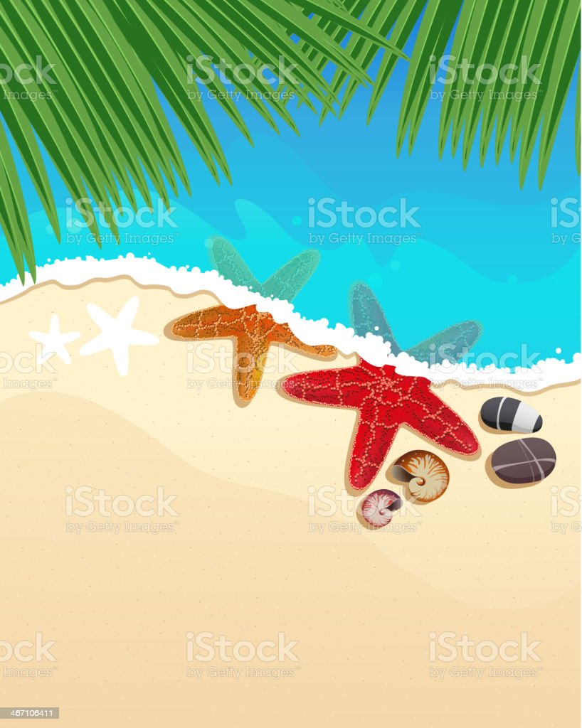 Beach with starfishes and palm branches royalty-free beach with starfishes and palm branches stock vector art & more images of animal