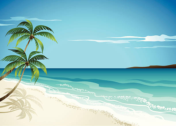 beachscene - strand stock-grafiken, -clipart, -cartoons und -symbole