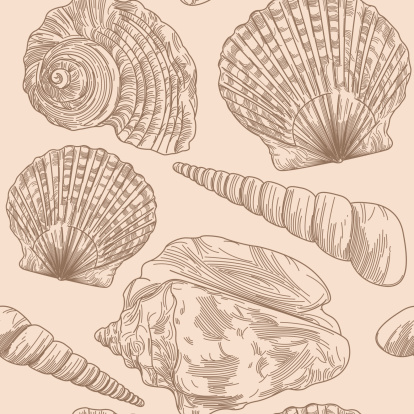 Beachy Seashell Pattern