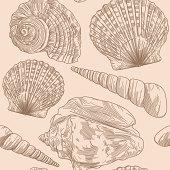 A seamless line art seashell pattern.