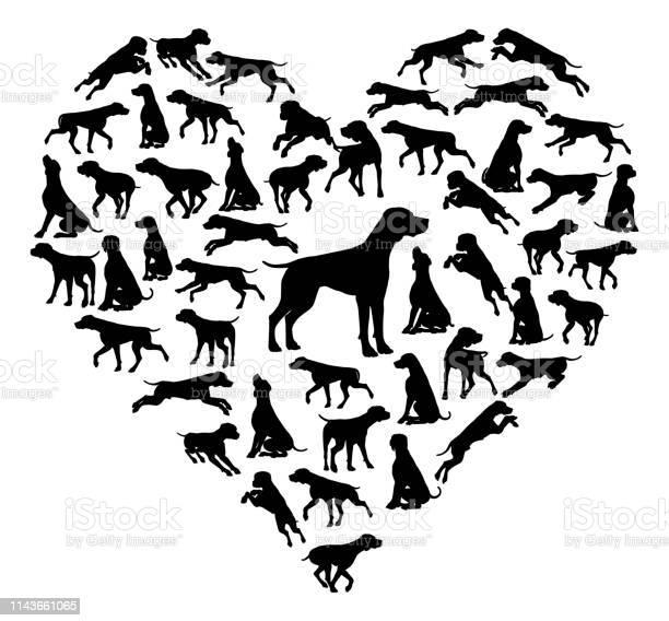 Beagle dog heart silhouette concept vector id1143661065?b=1&k=6&m=1143661065&s=612x612&h=tsryf fult69v29vgu nhpy937d4gvs5g3193vnrl80=